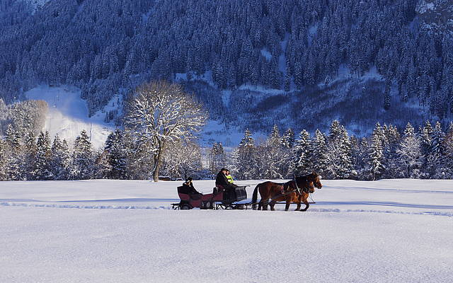 Carriage ride in the wintertime in Schwangau