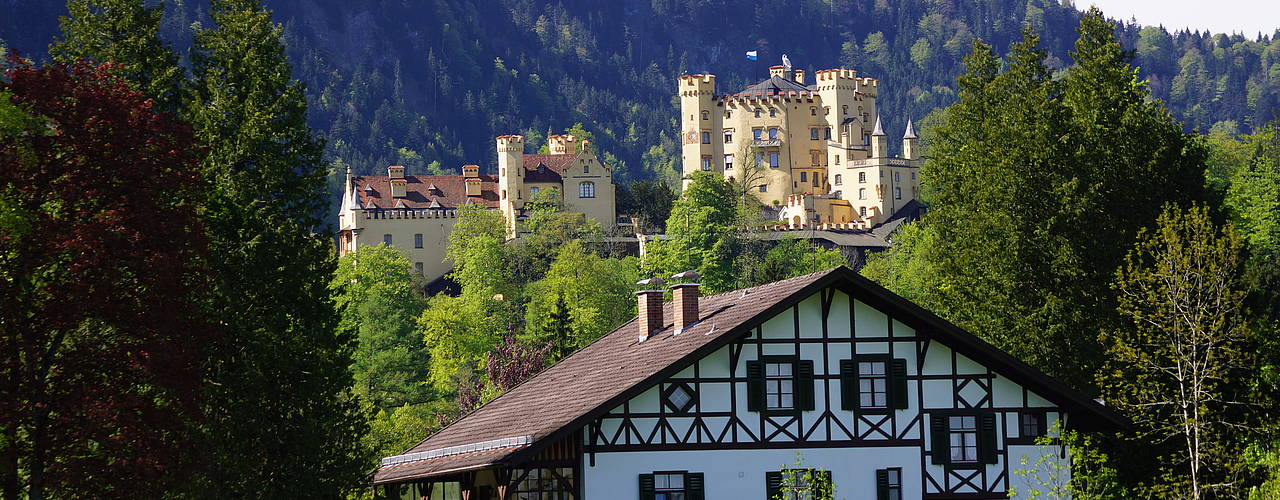 Hohenschwangau castle in the summer