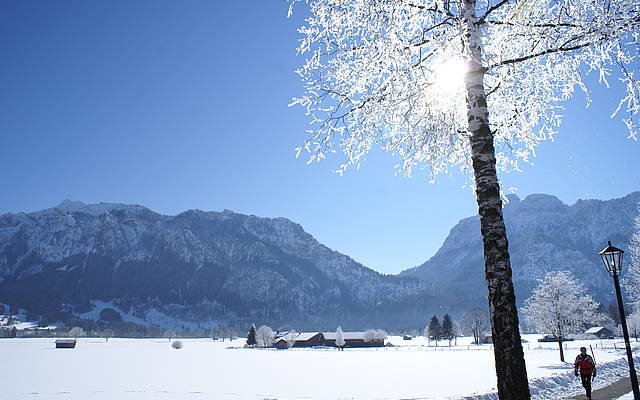 Winterhike below Neuschwanstein castle in Schwangau