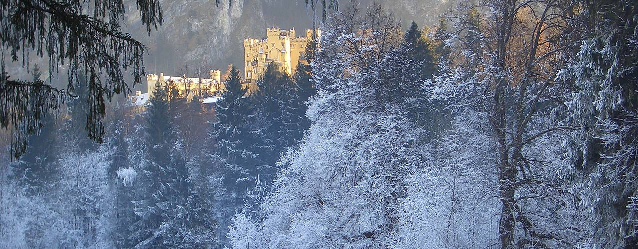 Hohenschwangau castle in the winter